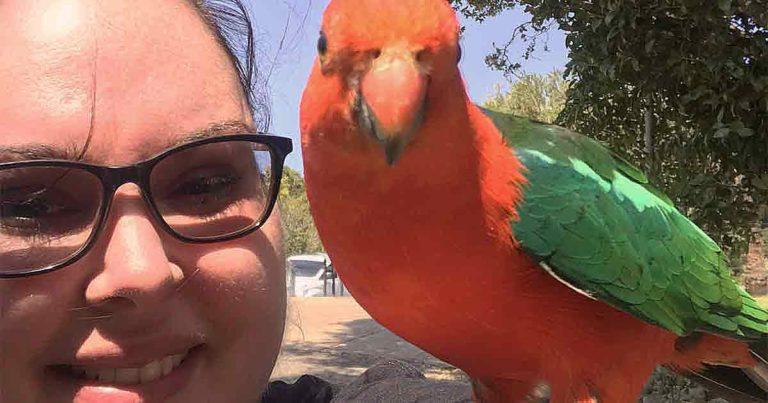 Lizzy Finn and her pet bird