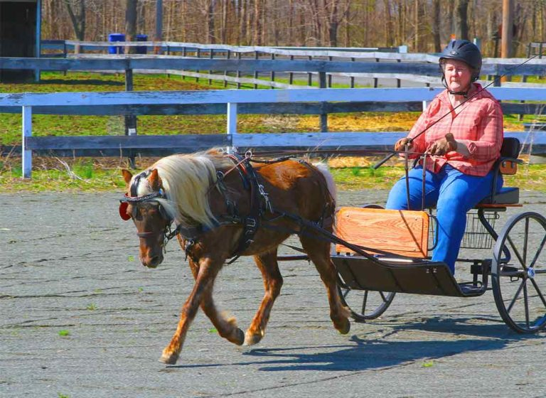 Colleen and Jazz on a ride